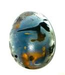 Xray egg (no. 4), digital photograph, 2012