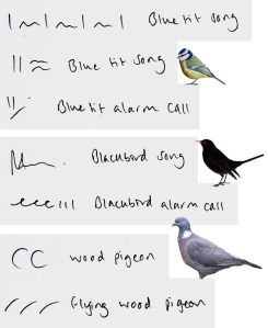 A selection from the bird vocalisation identification register