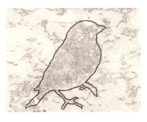 Goldfinch monoprint