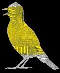Skylark, digital illustration, 2016