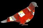 Turtle Dove, digital illustration, 2016