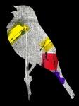 Yellowhammer, digital illustration, 2016