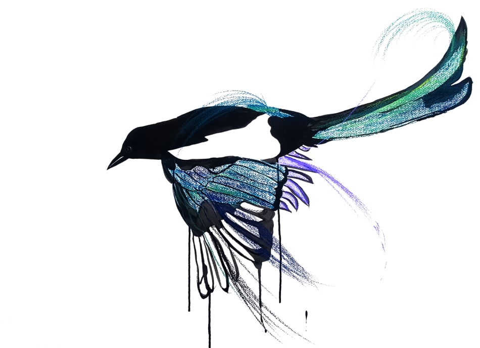 One for Sorrow for shop.jpg