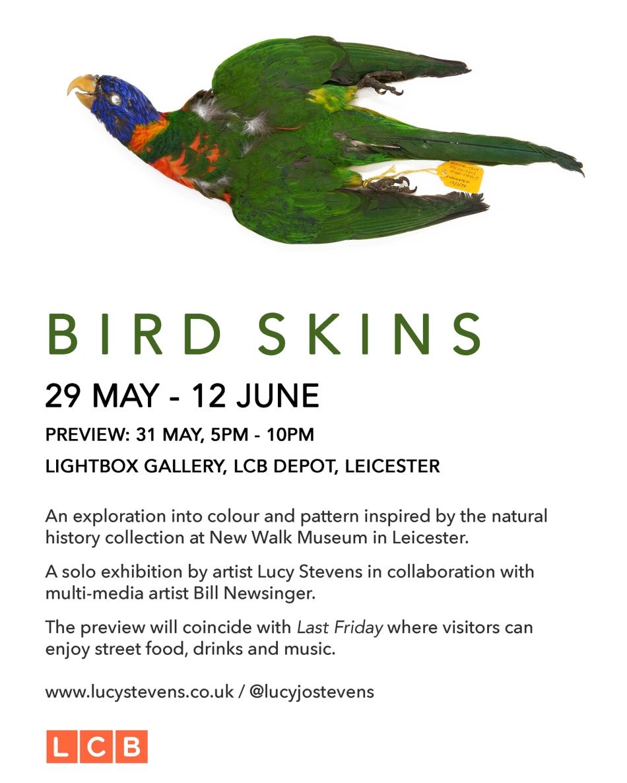 Web Bird Skins exhibition invite.jpg