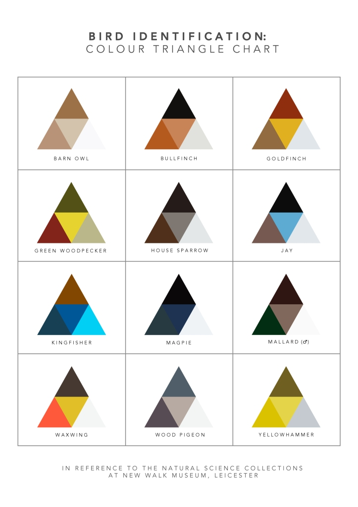 Triangle colour chart A3 GREY lines_edited-1
